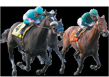 Sportech-Racing_header-image