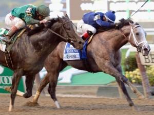 1383001458000-AP-Belmont-Park-Horse-Racing-001